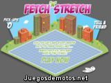 Fetch Stretch