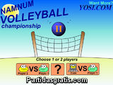 Namnum Volleyball championship II