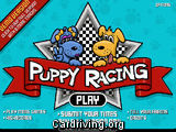 Puppy Racing