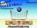 El partido de voleibol