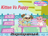 Kitten Vs Puppy
