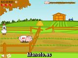 Cerdo de carreras